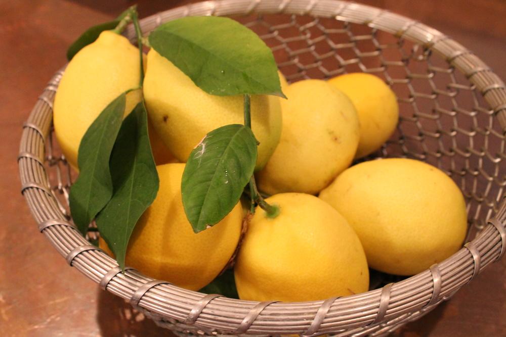 meyer lemon squares