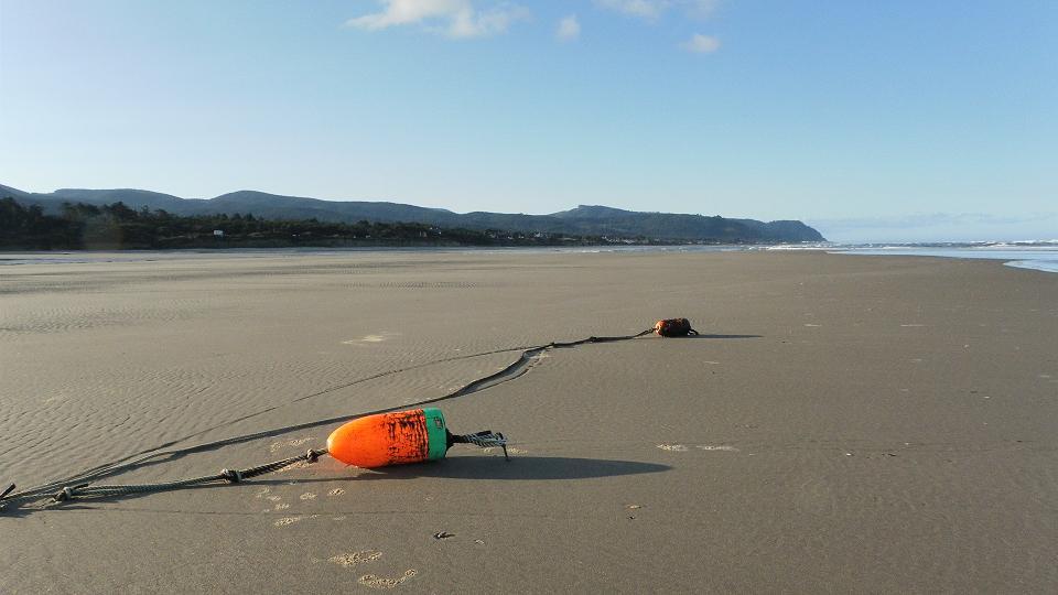 Crab Float on Tillicum Beach