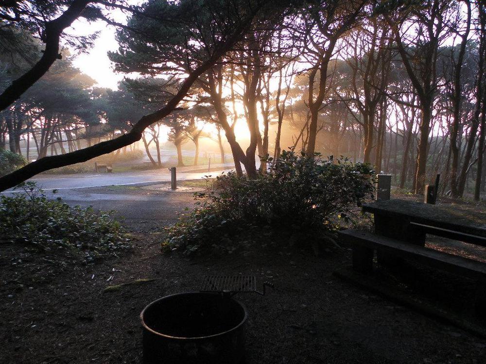 Campsite #20 - Electric/Water Hookup
