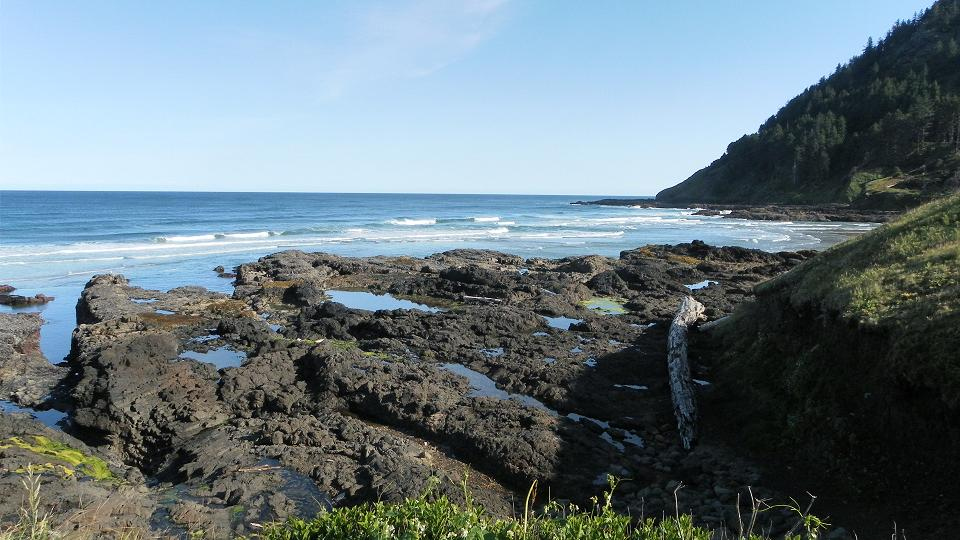 Marine Gardens at Cape Perpetua
