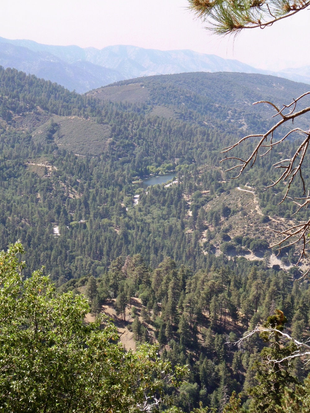 View from Angeles Scenic Byway