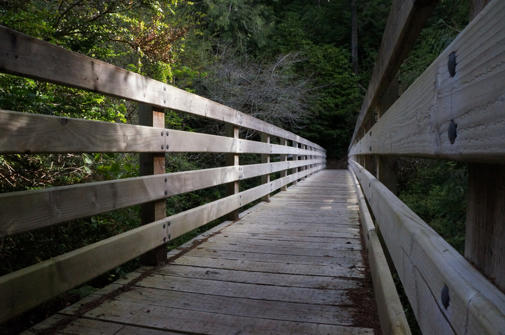 Sutton Campground trail bridge