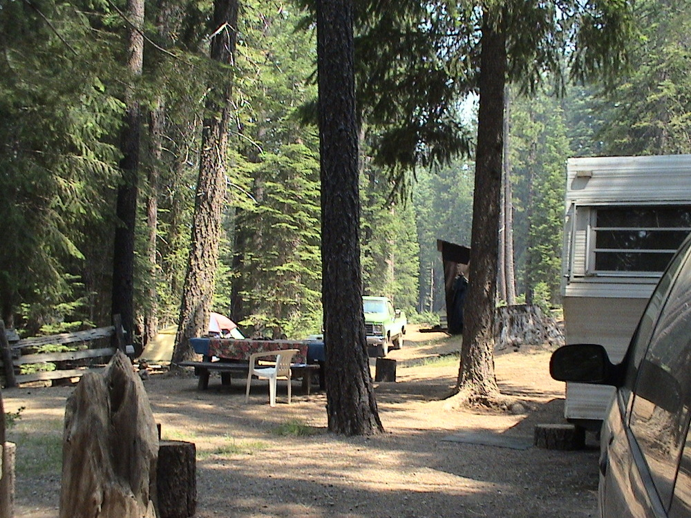 Yellow Creek Host Site