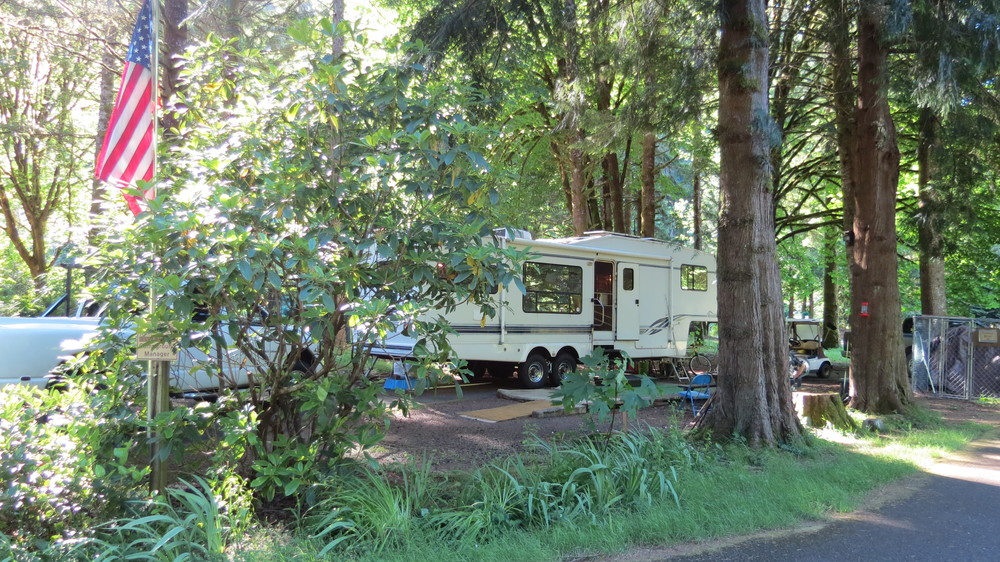 Full Hookup Host Site at Blackberry Campground