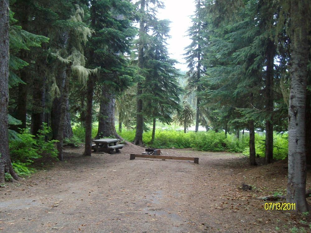 Shady campsites