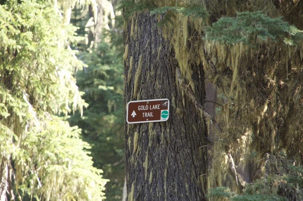 Gold Lake Trail