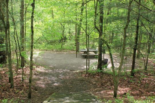 Nice privacy - Campsite B01