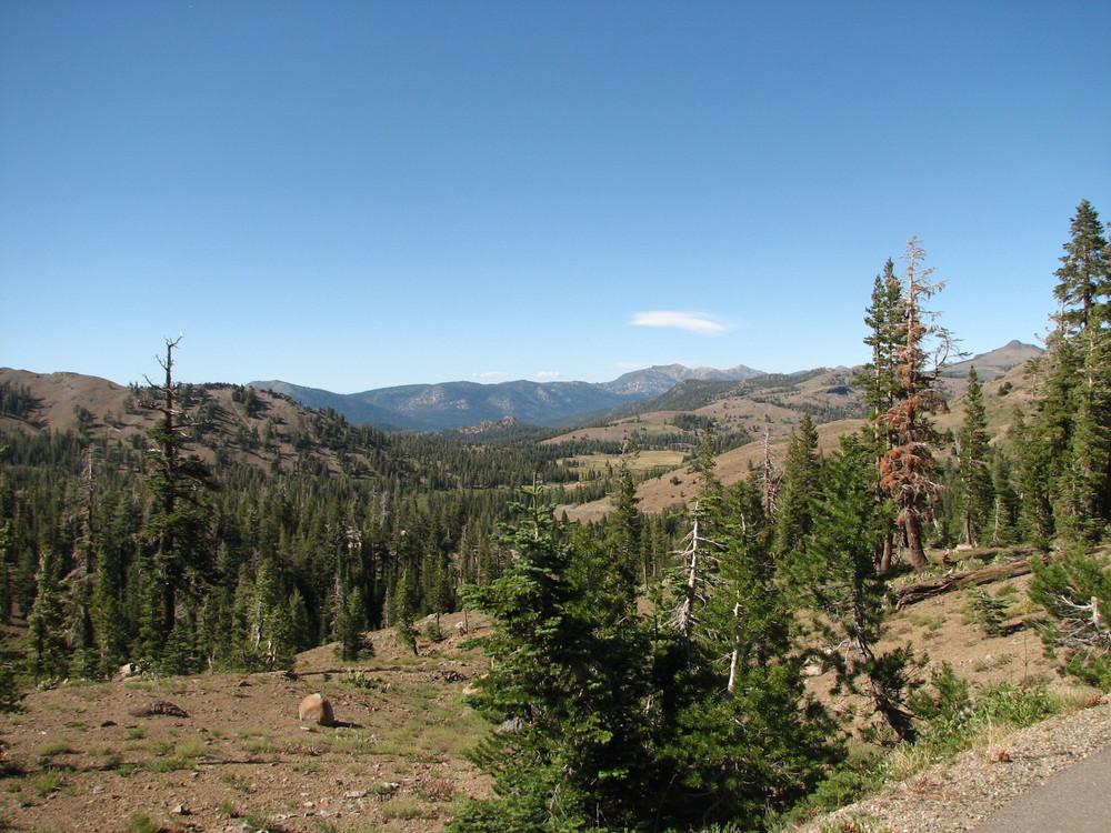 Carson Pass Area