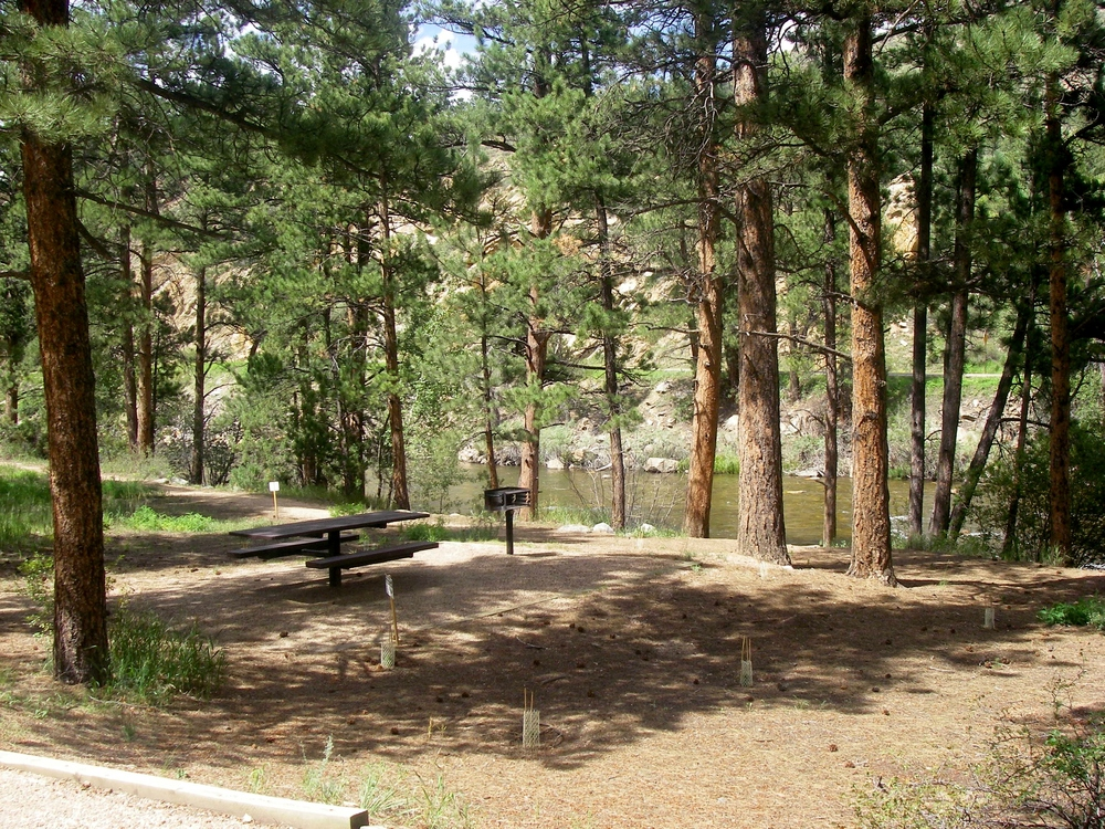 Campsites on the Cache La Poudre River