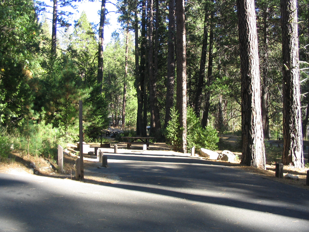Shady campsites in Dimond O Campground