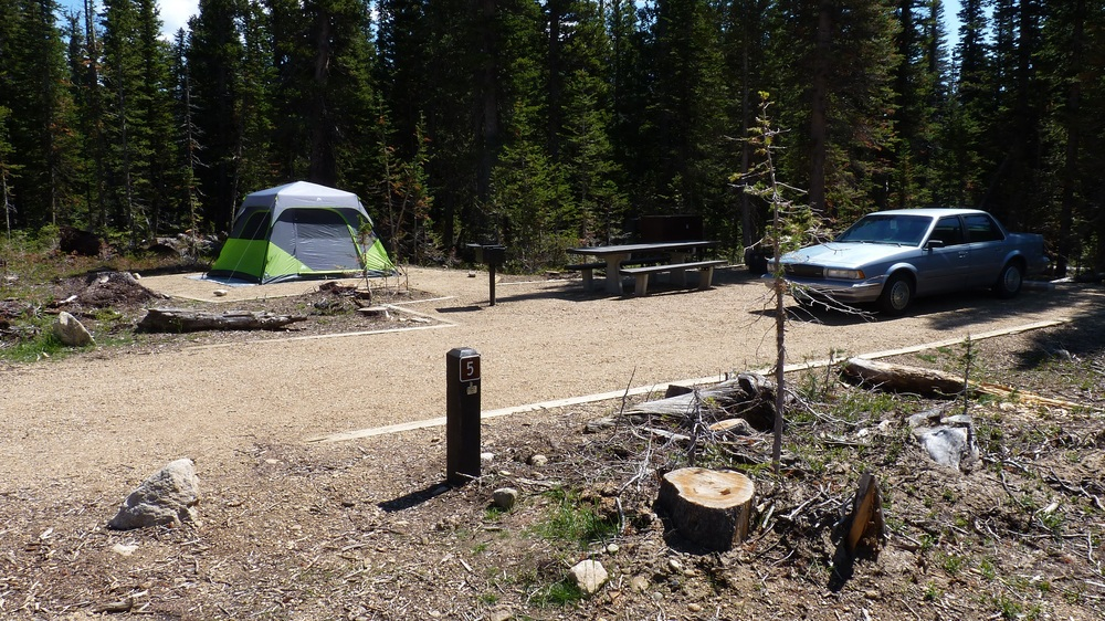 Some campsites are shady, some have full sun