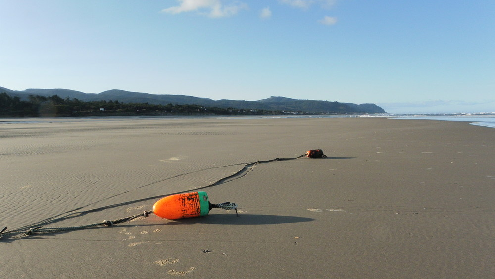 Tillicum Beach, Oregon - click on photo to see gallery