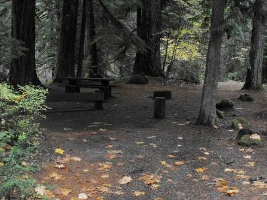 Some first-come-first-served campsites