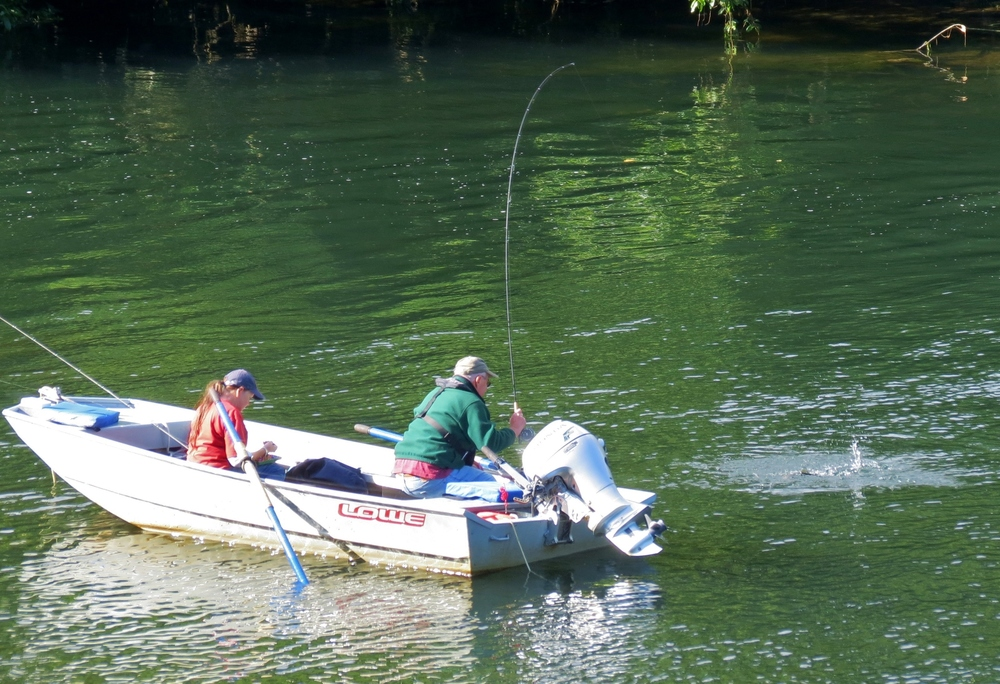 Fishing on the Alsea River, Central Oregon Coast