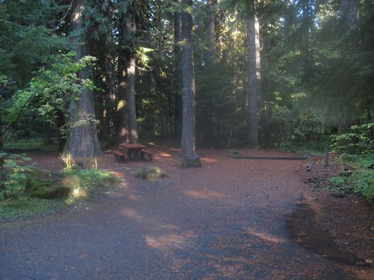 Level and shady campsites in Breitenbush Campground, near Detroit, OR