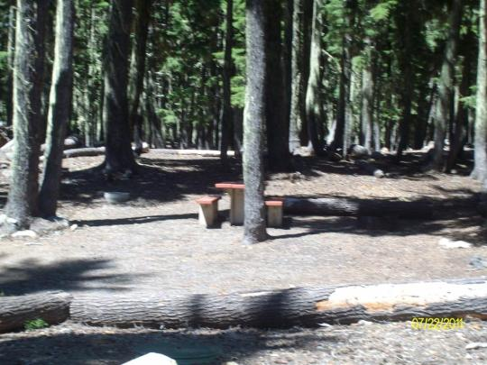 Campsites with table and fire ring on North Waldo Lake near Oakridge, OR