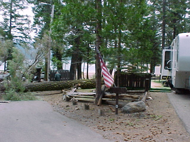 Loggers fall hazard tree in Host Site, Rocky Point Campground near Canyon Dam, CA