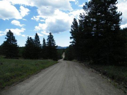Road to Columbine Campground