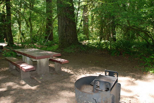 Campsites have table and fire ring