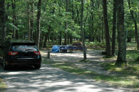 Tent friendly campsites