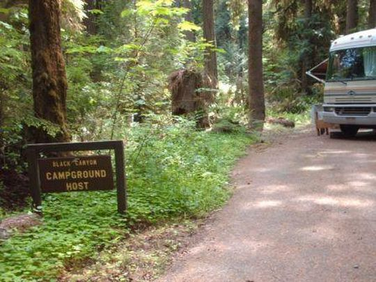 Host site in Black Canyon Campground near Oakridge, Oregon
