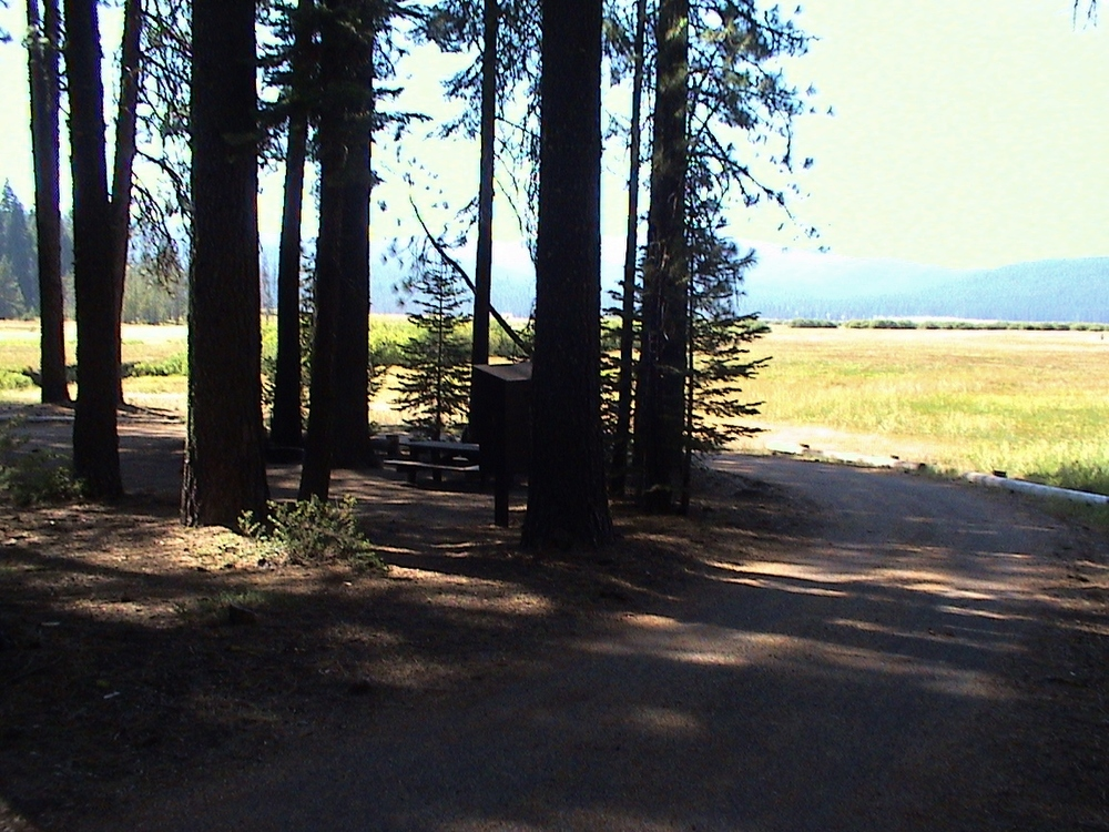 Yellow Creek Campground in Humbug Valley