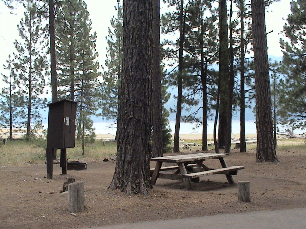 Lakefront camping in Ponderosa Campground