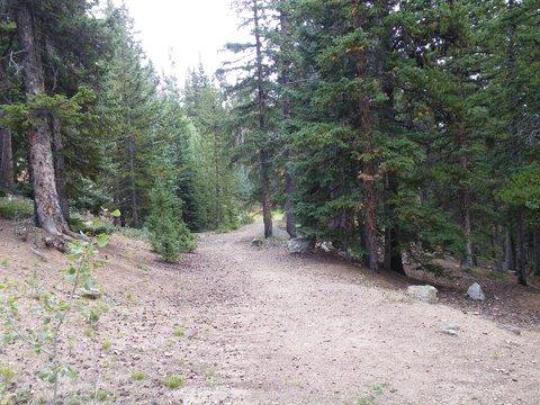 EchoLake-trail.jpg
