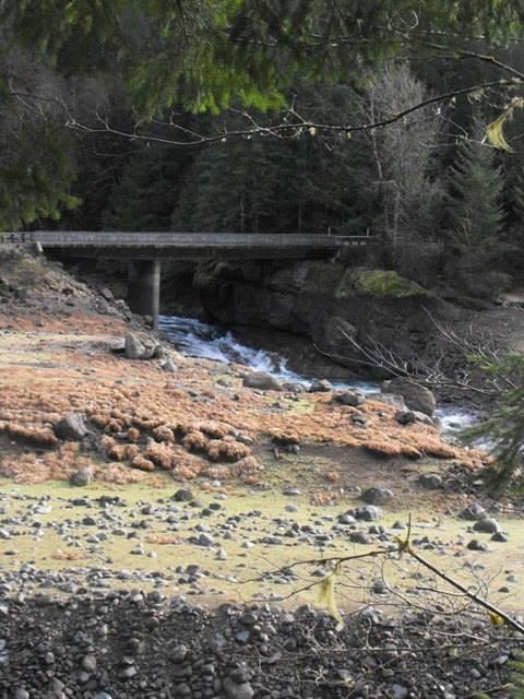 Lookout Bridge near Mona