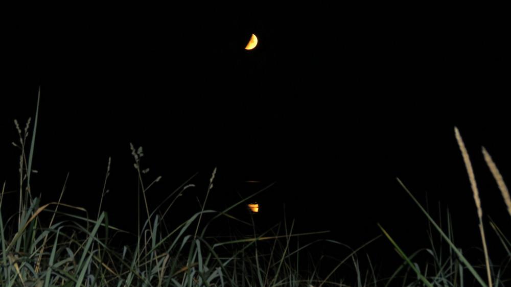 Moonset-1.JPG