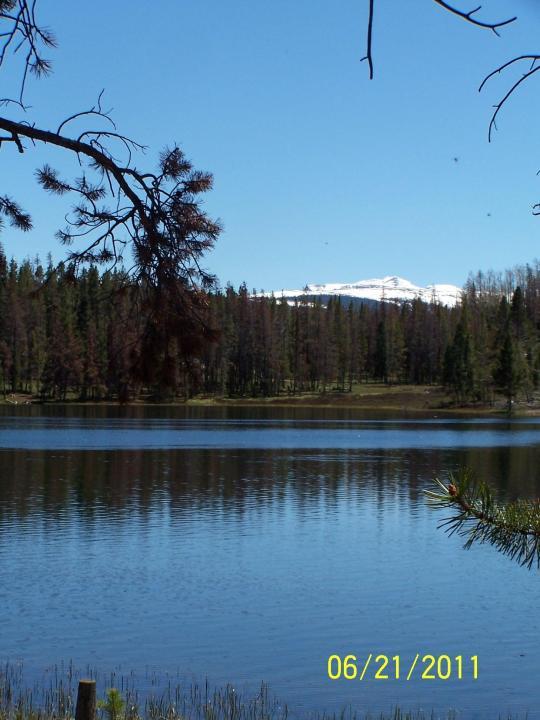 marsh-lake.jpg