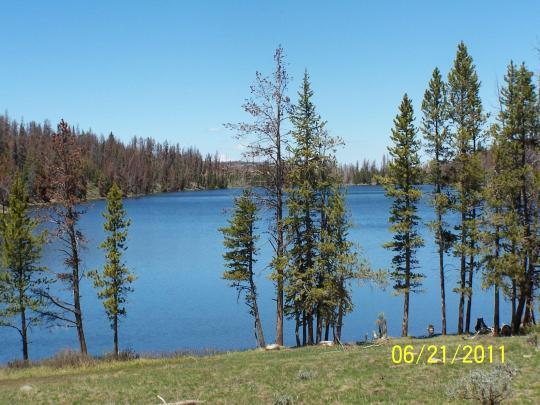 marsh-lake-campground-view.jpg