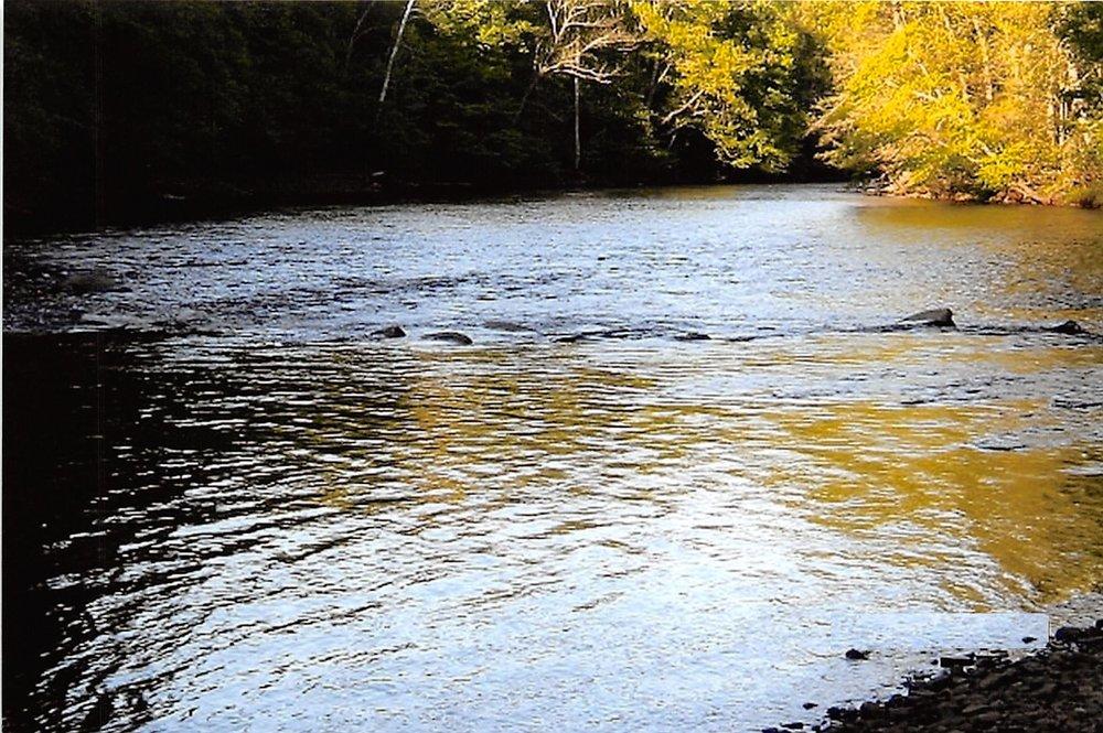 Shavers Fork River