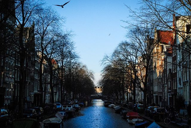It's been 10 years since I studied abroad, trading snowy Boston for Kasteel Well, a 14th century castle in the Netherlands. I'm digging through my archives to share these photos I took a decade ago. First up: Amsterdam — walking along the windswept canals, browsing through morning markets, and wandering the lamp lit streets at night. 🇳🇱 #castledwellers