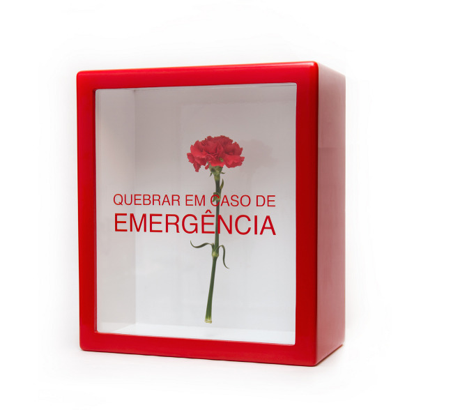 emergencia003.jpeg