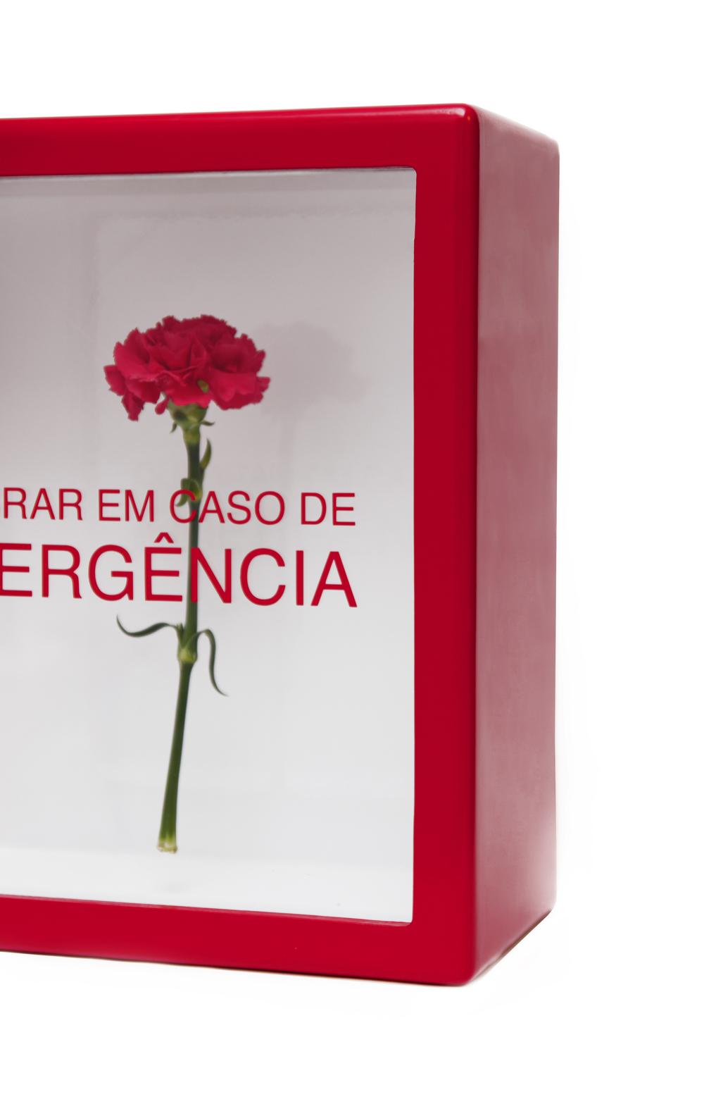 emergencia004.jpg