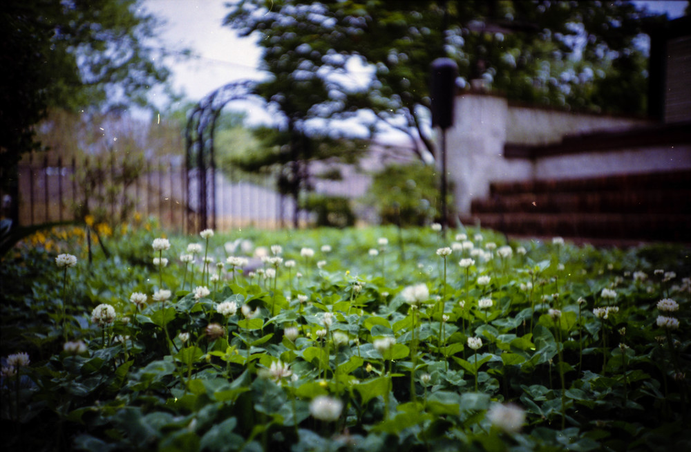 "The ""Lomo effect"" with heavy vignetting, vibrant colors, unspecific focus, and fisheye viewpoint."