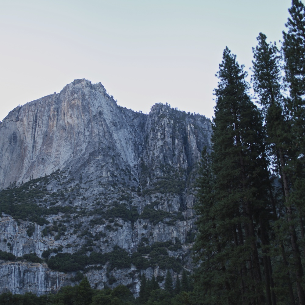 Another monumental edifice in Yosemite National Park. Just below the towering facade lay an endless chartreuse meadow.