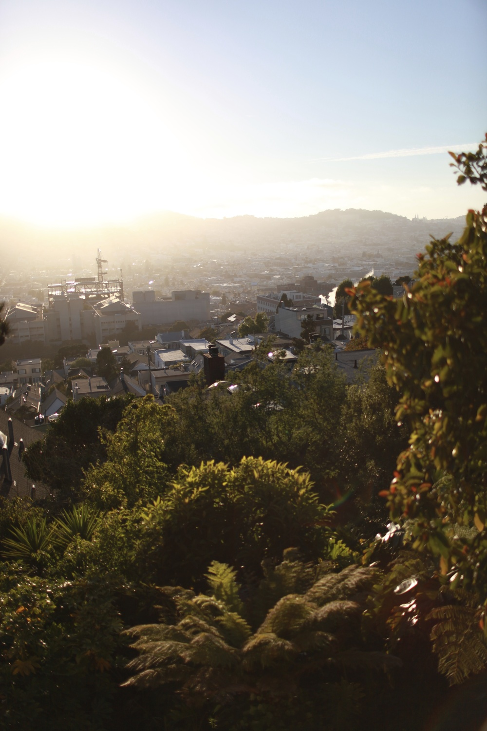 communal tropical yard & garden below, with hazy view of the mission above