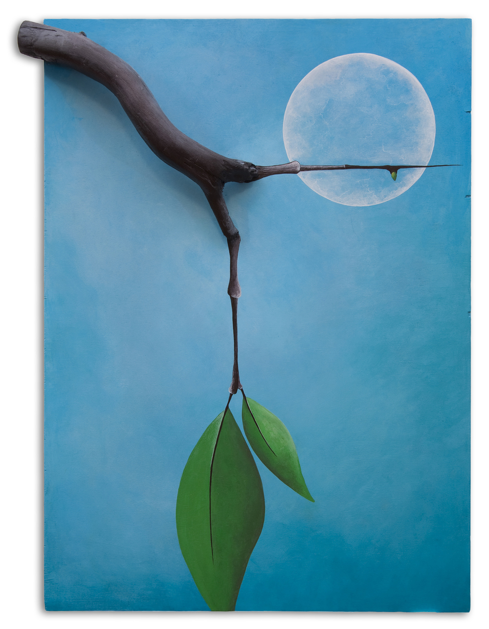 14_blue_moon_branch_leaves.jpg