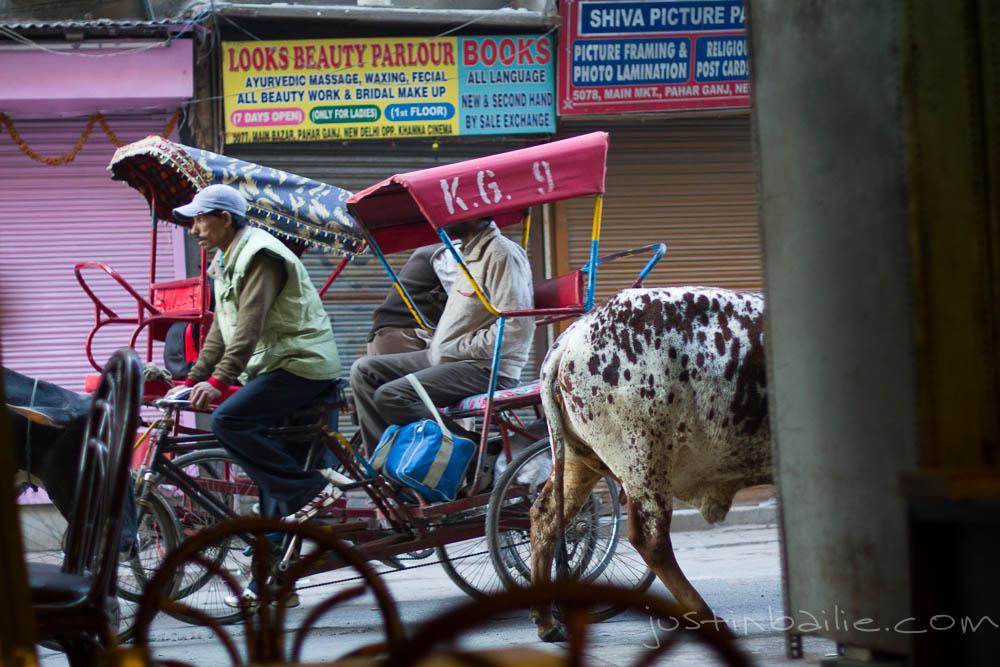 JBailie-Delhi_India-121812-0002.jpg