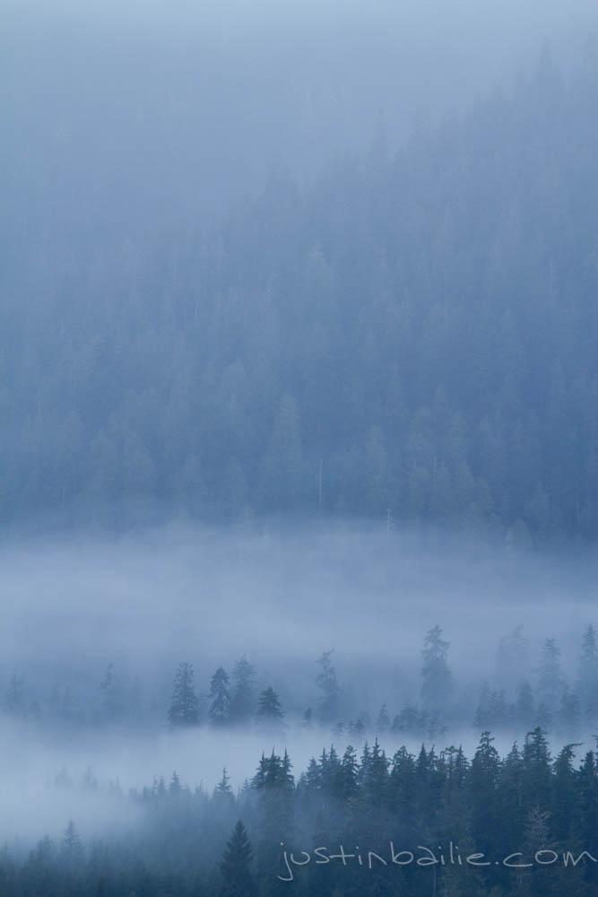 JBailie-lake_quinault-122912-0134.jpg