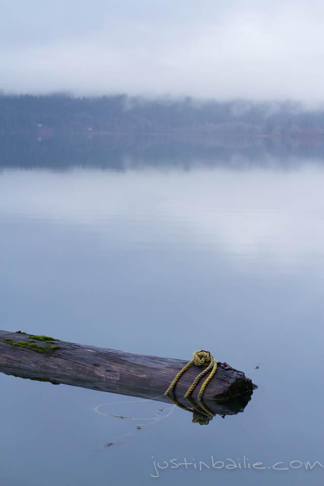 JBailie-lake_quinault-122912-0159.jpg