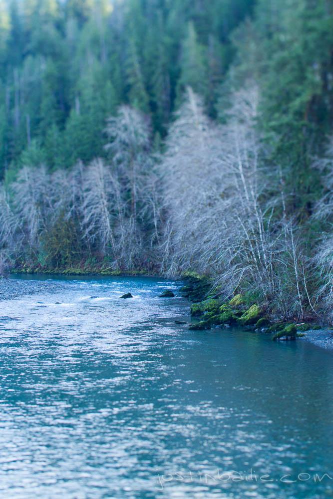 JBailie-lake_quinault-123012-0236.jpg