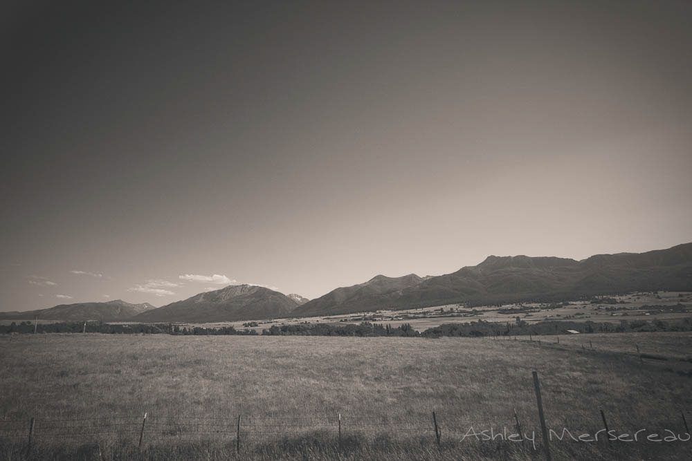 _MG_9168.jpg