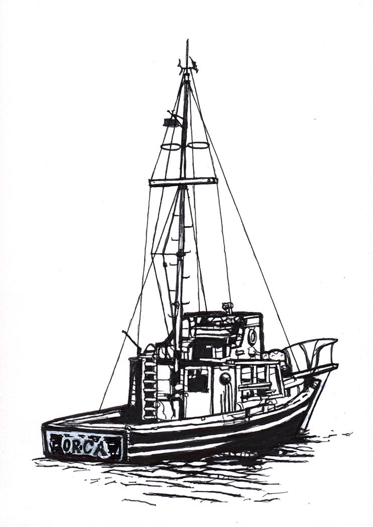 OrcaOG.jpg