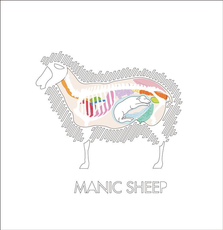manic sheep.jpg
