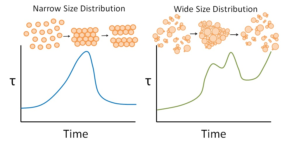 Schematic of shear start-up overshoots for narrow and wide particle size distribution suspensions with adsorbed comb-polymer