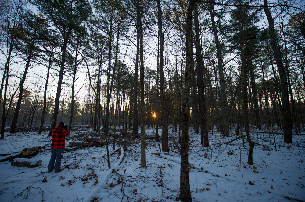 My friend Jesse photographing the sunrise through the pines.