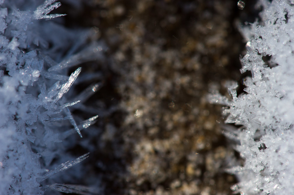 The frosty spikes on the left were a great contrast to the snowflakes on the right.